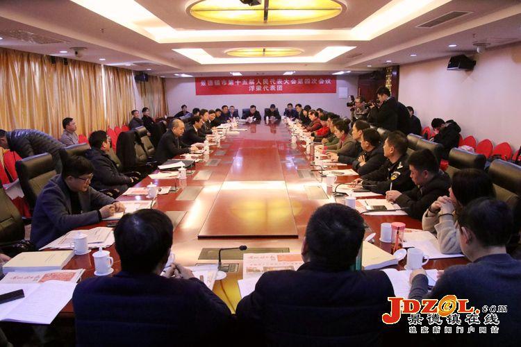 刘锋黄康明参加审议讨论《政府工作报告》